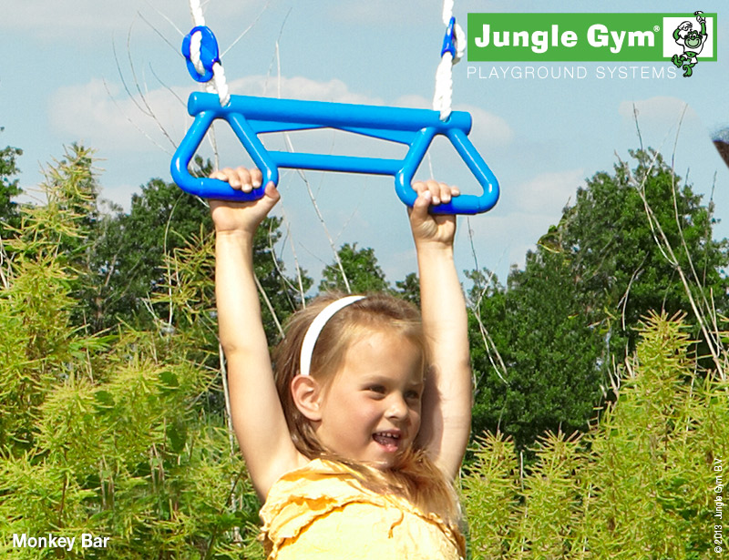 Jungle Gym Monkey bar
